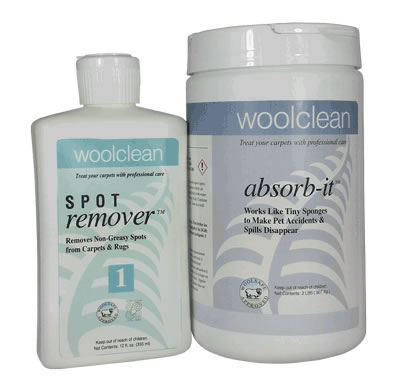 WoolClean wet spot remover and Absorb-It